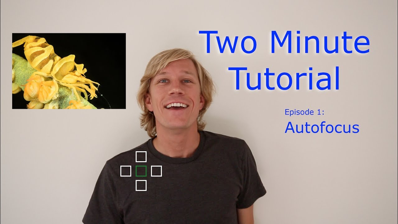 Two-Minute-Photography-Tutorial-Autofocus