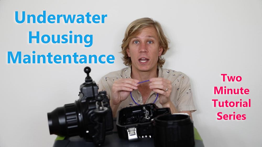 Underwater-Housing-Maintenance-Tutorial