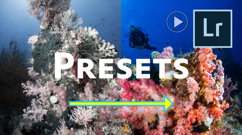 how to create a lightroom develop preset