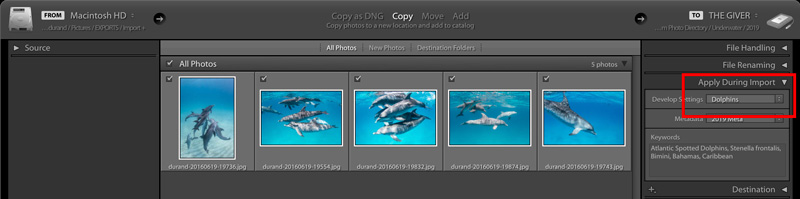 Screenshot showing Lightroom import dialog box and applying preset.