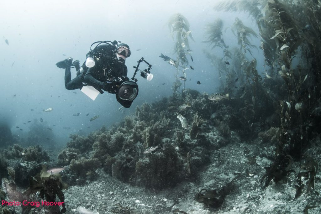 brent durand scuba diving underwater