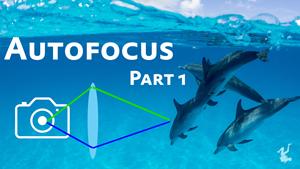 Autofocus Tutorial Part 1