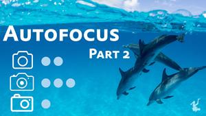 autofocus video miniseries - part 2
