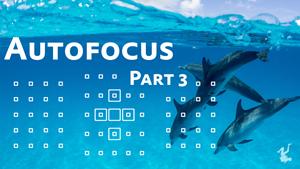 autofocus for underwater photography part 3