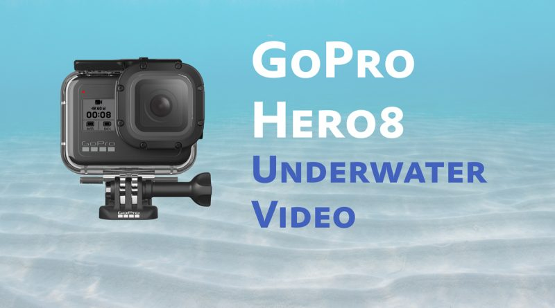 GoPro HERO8 Review for Underwater Video