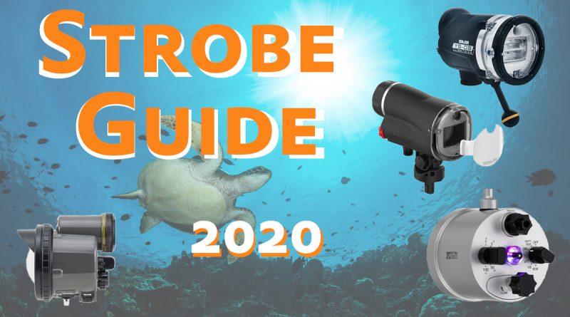 Underwater Strobe Comparison 2020