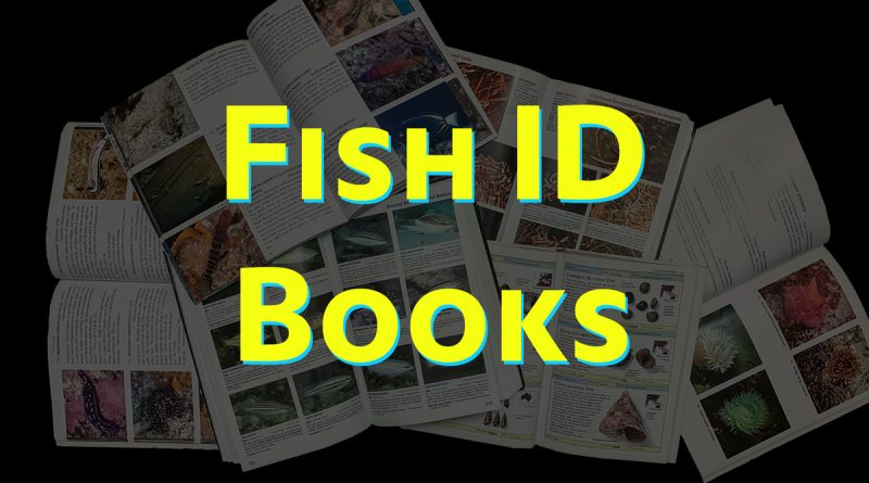 Best Fish ID Books