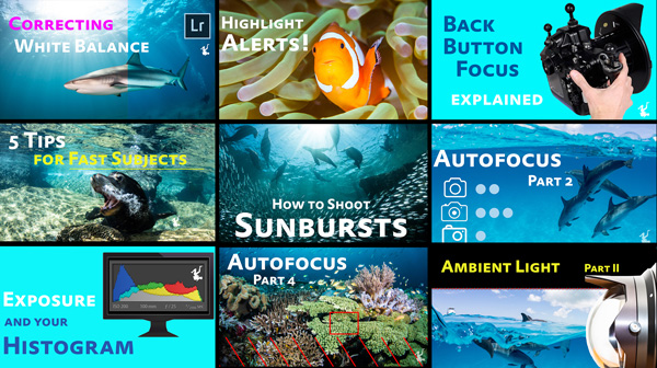 underwater photography video tutorials