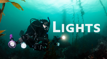 strobes vs lights underwater