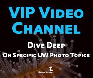 vip video series ad