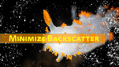 how to minimize backscatter thumb
