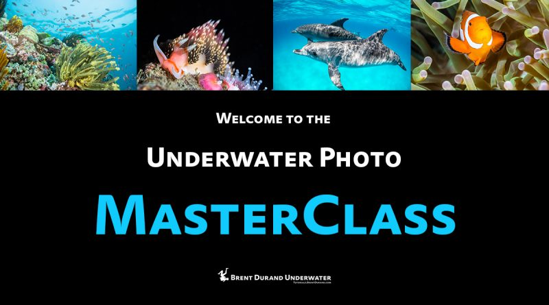 Underwater Photo MasterClass video tutorials