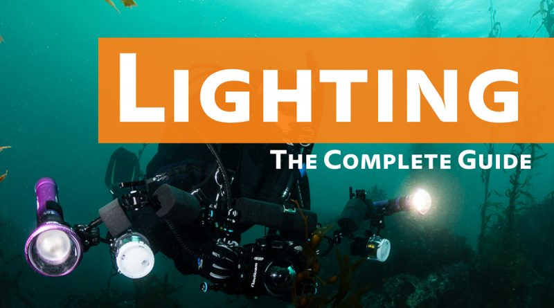 Video Lights vs Strobes; Why you Need Light Underwater