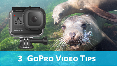 3 Tips for GoPro Underwater Video