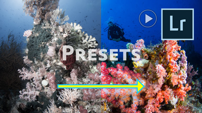 how to create and use a lightroom preset