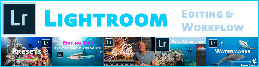 Lightroom Editing and Workflow Tutorials for Underwater Photographers