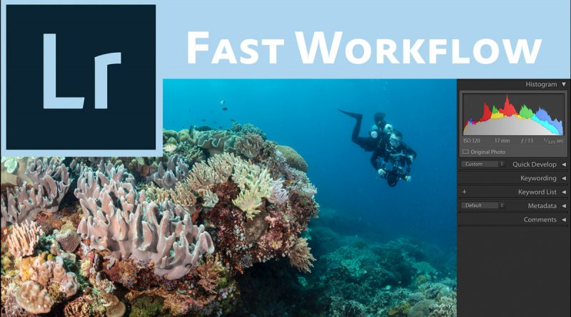 Speed up your Lightroom Workflow for underwater photos