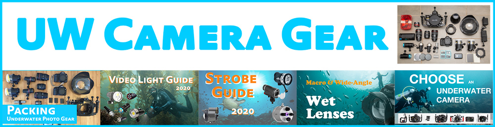 Underwater Camera Gear Guides and Tutorials