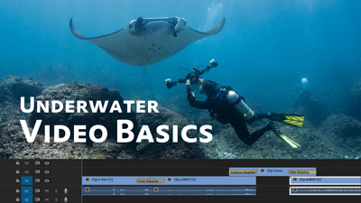 Underwater Video Basics