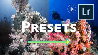 How to Create and Use Lightroom Develop Presets