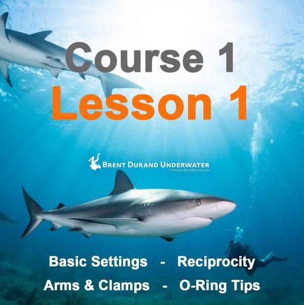 Underwater Photo Course 1 - Lesson 1