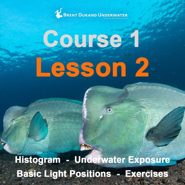 Underwater Photo Course 1 - Lesson 2