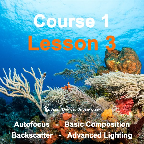 Underwater Photo Course 1 - Lesson 3