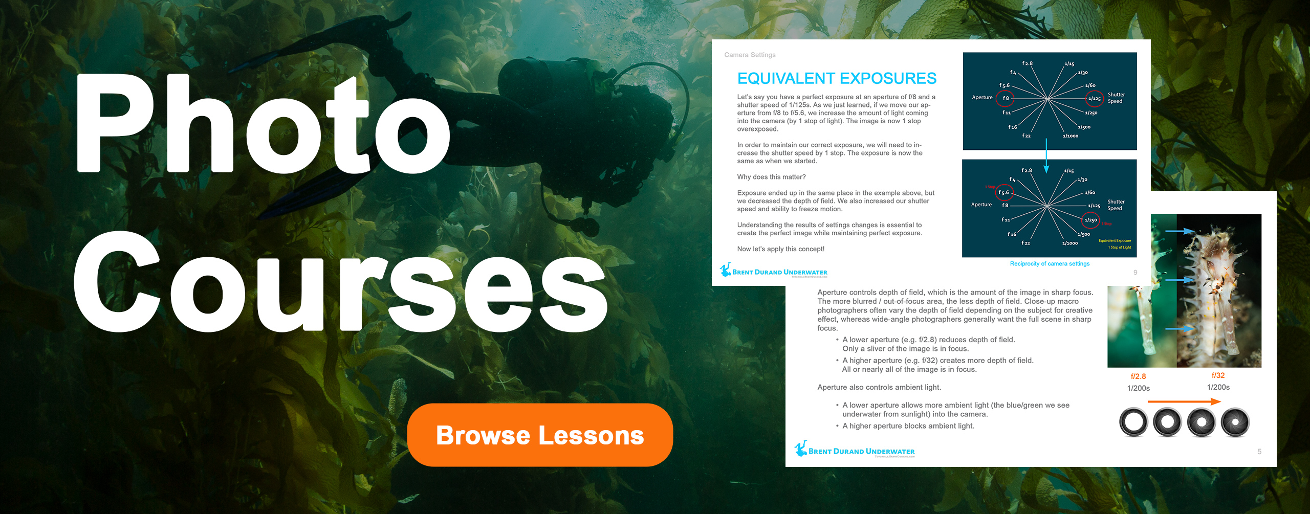 Underwater Photo Courses promo image