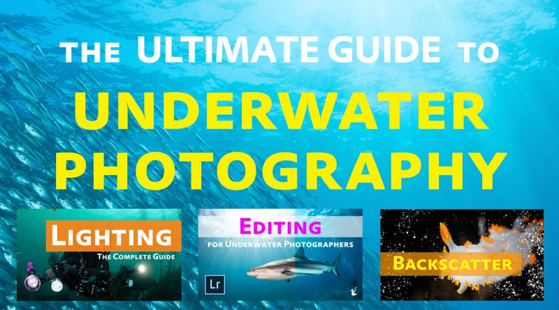 Underwater Photo Ultimate Instruction Guide and Tutorials Index