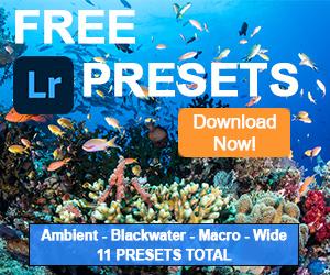 Free Lightroom Presets 300x250